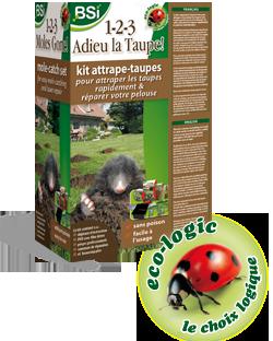 Des taupes d truisent votre jardin probl mes actuels sos huis en tuin - Comment se debarasser des taupes ...